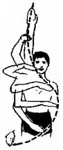 Траектория руки при выполнении гребка
