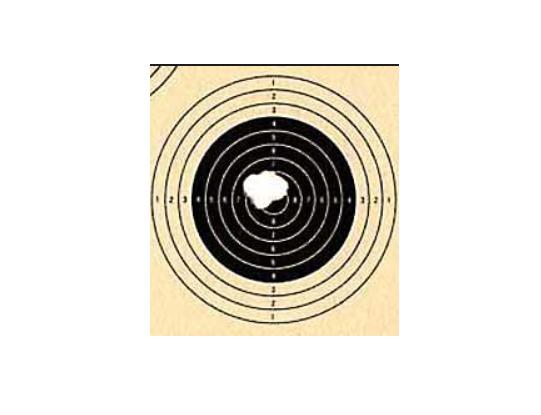 результаты стрельбы после двух видов чемпионат москвы по летнему полиатлону 17-19 ноября 2017