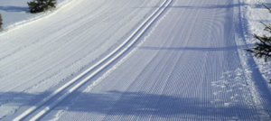 Протоколы Первенства России 2019 среди юношей и девушек по зимнему троеборью 21-24 февраля Сасово
